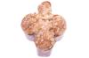 colomba-pasqua-Lula-Lacalamita-Bottega-artigiano-artigianale-lievitato-lievitazione-fermentazione-lievitomadre-lievitazione72ore-mandorle-arance-arancia-mandarino-limone-canditi-primavera-agrumi-giotto